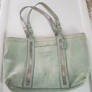 Mint green bag